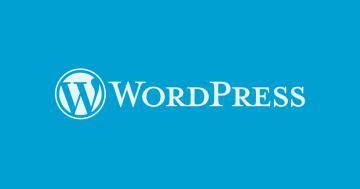 Wordpress BG - El Desarrollador Web